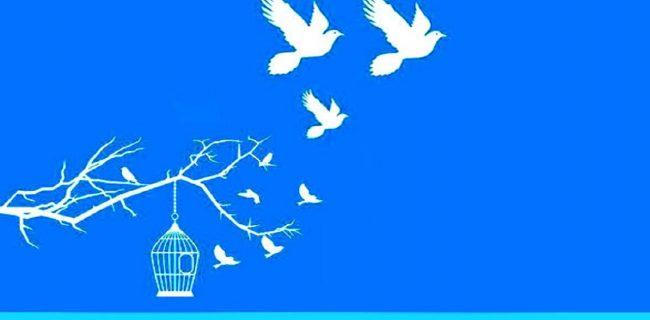 پایان پاییز زندگی جوان یزدی با آغاز ماه مهربانی