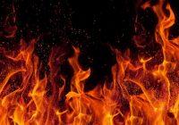 آتشی که دامن گیر باغ های فخرآباد شد